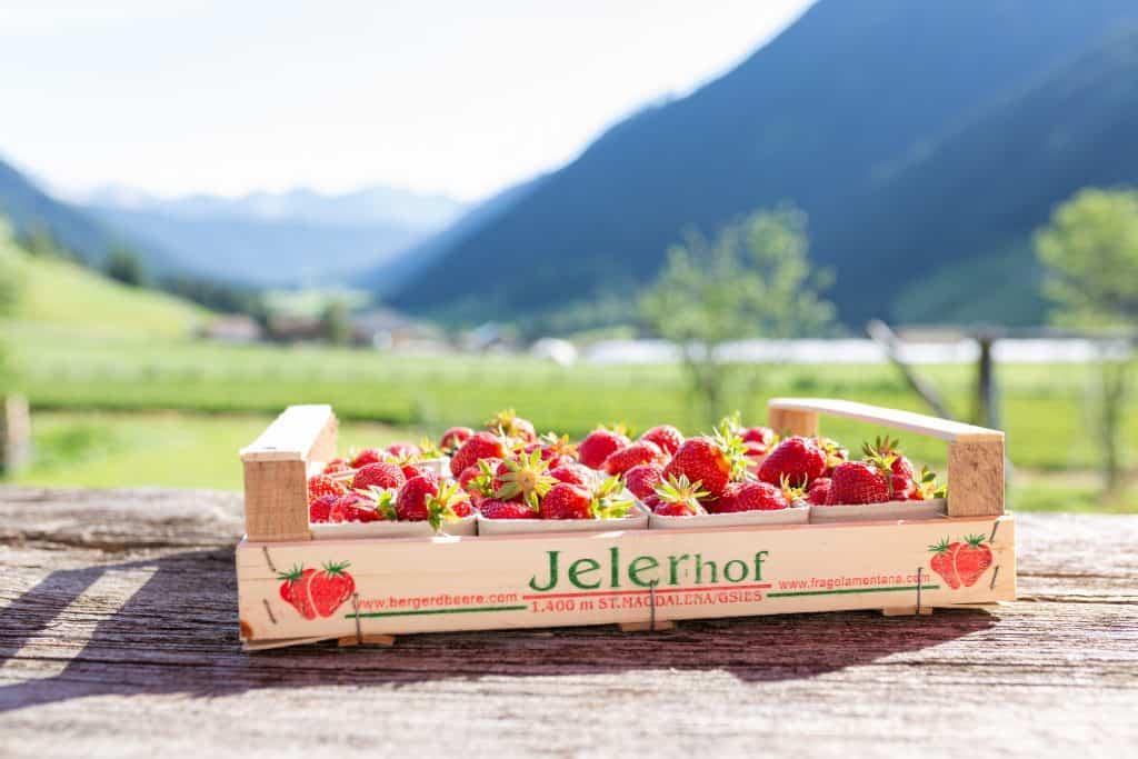 2 kg Erdbeeren